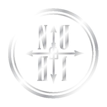 nuhi_logo_silverAsset 1